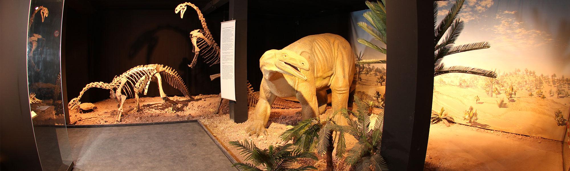 museum-auberlehaus-trossingen-dinosaurier-headerbild